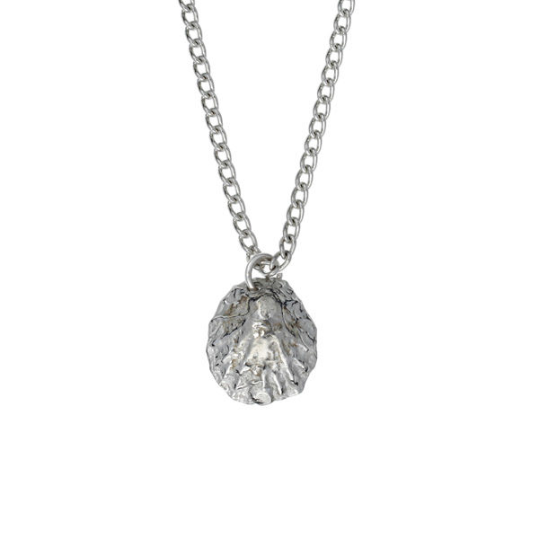 "Limpet shell pendant – small pewter shell on an 18"" tin-plated surgical steel curb chain."
