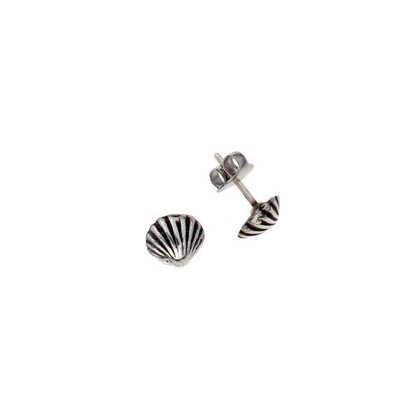 St Michaels Way Shell stud earrings