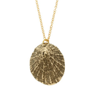 Bronze Limpet shell pendant