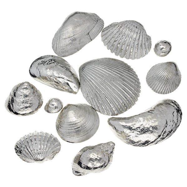 Set of 12 shells