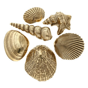 Bronze shells set of six